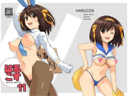 harucos 11 cover