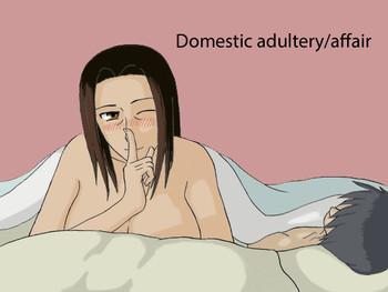 kateinai furin domestic adultery affair cover